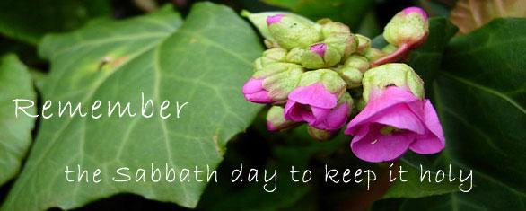 sabbath_day_banner